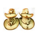 Branded Cowboy Hats with Bull Horn or Stars