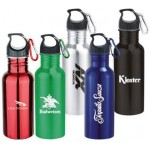 Logo Printed 22 Oz. Wide Mouth Stainless Steel Water Bottle with Carabiner