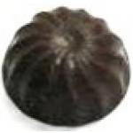 0.64 Oz. Chocolate Candy Shape Swirled Circle Logo Branded