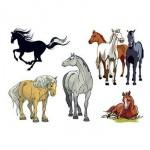 Assorted Horses Temporary Tattoos Logo Printed