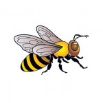 Bee Temporary Tattoo Custom Personalized