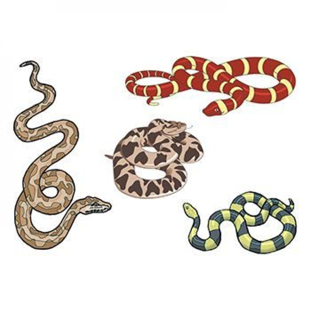 Assorted Snakes Temporary Tattoo Custom Personalized