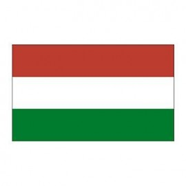 Hungary Flag Temporary Tattoo Logo Printed