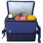 Logo Branded Family Size Cooler Bag w/ Adjustable Handle