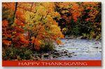 Autumn Colors Happy Thanksgiving Special Occasion Cards Custom Printed