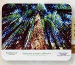 "Recycled Hi Definition Mouse Pad (1/8"" Thick) (7 1/2"" x 6 1/2"")"