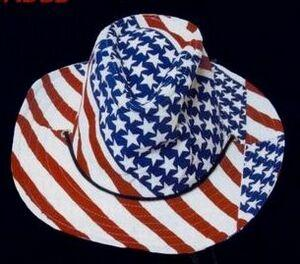 Stars and Stripes Cowboy Hat