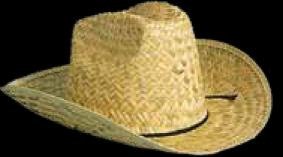 Adult Cowboy Hat- Imprinted Bands Available!