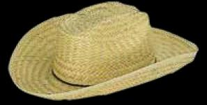 Adult Barn Dance Hat-Imprinted Bands Available!