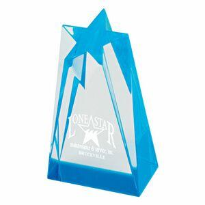 Sculpted Star Acrylic Award (3 1/2