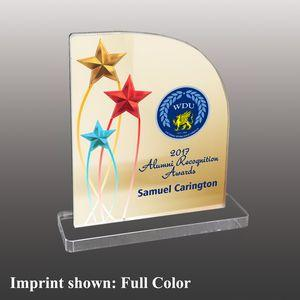 Star Shaped Full Color Acrylic Awards - Small