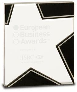 Black & Silver Glass Star Award